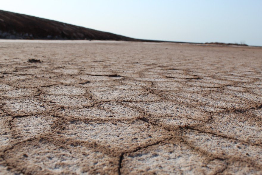 Drier Springs Bring Hotter Summers in Withering Southwest