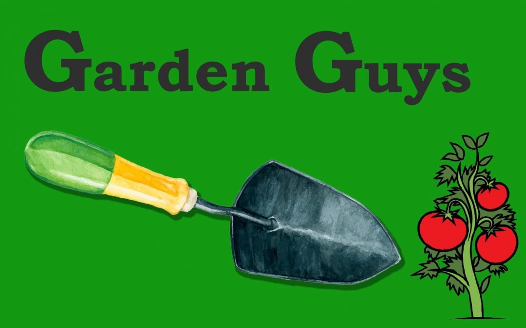 """Your Very Own Tomato Confidential: """"Garden Guys"""" Debuts Saturday Mornings on KSUT"""